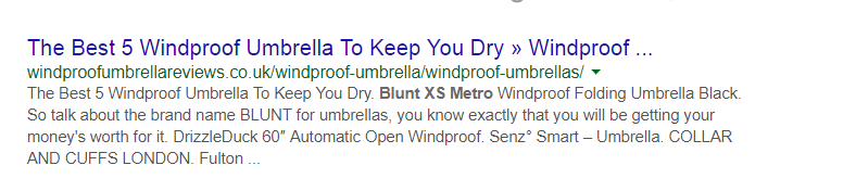Best 5 Windproof Umbrella URL Example
