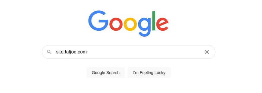 Google Index Search SEO Metrics