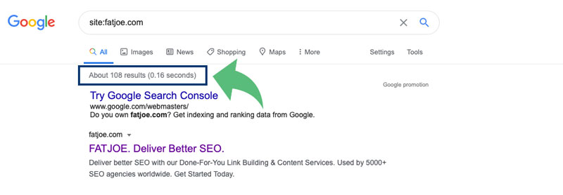 An image showing the results from a simple Google indexing check