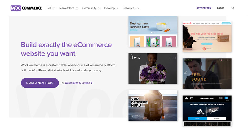 A screenshot of the WooCommerce Homepage